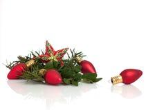 Natale ornamento e sempreverdi della stella su bianco Immagini Stock Libere da Diritti