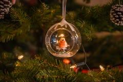 Natale Robin nell'albero di Natale Fotografia Stock Libera da Diritti