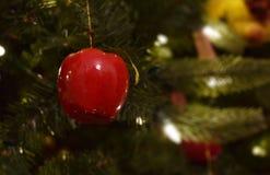 Natale rosso Apple nell'albero di Natale con le luci bianche immagine stock libera da diritti