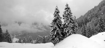 Immagine della neve Immagini Stock Libere da Diritti