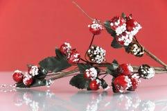 Natale vischio e decorazione delle bacche Fotografie Stock Libere da Diritti