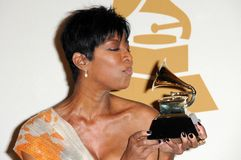 Natalie Cole Royalty Free Stock Photo