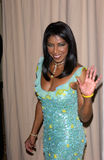 Natalie Cole Royalty Free Stock Photos