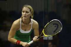 Natalie Grinham (Nederlands). Malaysia Open Squash 2008 quarter final match featuring Natalie Grinham Royalty Free Stock Photos