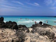 Natation à la plage en Hawaï Image libre de droits