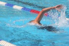 natation Image libre de droits
