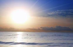 Natation au lever de soleil en mer Méditerranée Images stock