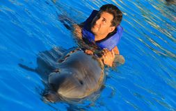 Natation d'homme de yeux verts avec les dauphins heureux de sourire d'un nez de bouteille de bain d'enfant de visage de nageoire  Photos stock