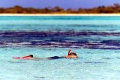 Homme naviguant au schnorchel en mer Photo libre de droits