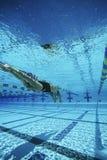 Natation de femme dans la piscine images libres de droits