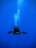 Natation de plongeur avec la bouée Images libres de droits