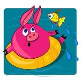 Natation de porc dans l'océan. illustration de carte Photos stock