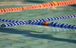 natation de regroupement Photographie stock libre de droits