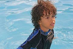natation de regroupement d'amusement Image libre de droits