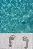 natation de regroupement d'empreintes de pas Photos libres de droits