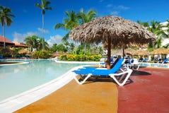 natation de regroupement tropicale Image libre de droits