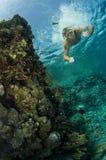Natation mâle sous-marine sur le récif Photo libre de droits