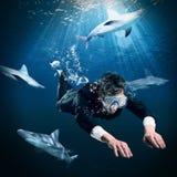 Natation parmi des requins Photographie stock libre de droits