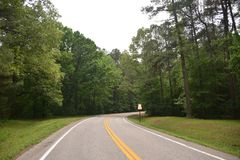 Natchez Trace Parkway Roadway Tennessee Arkivfoto