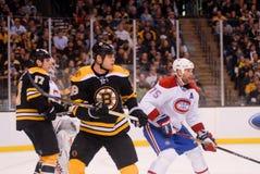 Nathan Horton, Boston Bruins photo stock