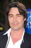 Nathaniel Parker Royalty Free Stock Photo