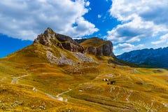 Nationaal bergenpark Durmitor - Montenegro Royalty-vrije Stock Foto's