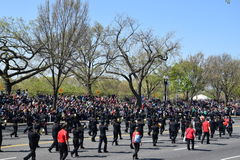 2016 Nationaal Cherry Blossom Parade in Washington DC Stock Foto's