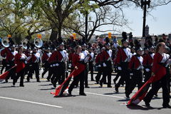 2016 Nationaal Cherry Blossom Parade in Washington DC Royalty-vrije Stock Afbeeldingen