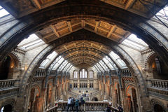 Nationaal Geschiedenismuseum in Londen Stock Foto