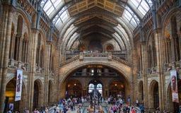 Nationaal geschiedenismuseum, Londen Stock Foto