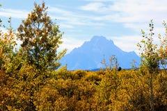 Nationaal het Park enkel zuiden van Grand Teton van Nationale het Park Mooie Bergen van Yellowstone stock fotografie