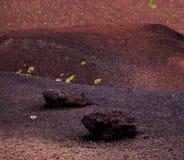 Nationaal het parkpanorama van Etna van vulkanisch landschap met krater, Catanië, Sicilië Stock Foto