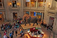 Nationaal museum van biologie Stock Foto's