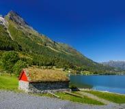 Nationaal Noors plattelandshuisje met een gras op een dak Royalty-vrije Stock Fotografie