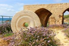 Nationaal park Achziv in Westelijke Galilee, Israël Stock Afbeeldingen