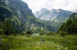 Nationaal-park Berchtesgaden Royalty-vrije Stock Foto's