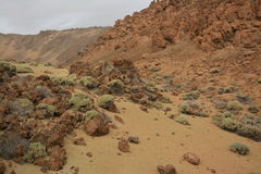 Nationaal Park Gr-Teide Stock Afbeeldingen