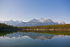 Nationaal Park Herbert Lake - Banff Royalty-vrije Stock Fotografie
