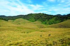 Nationaal Park Horton Plains en blauwe hemel royalty-vrije stock afbeeldingen