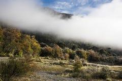 Nationaal Park Los Alerces in de herfst, Patagonië, Argentinië stock fotografie