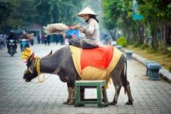 Nationaal Park Ninh Binh vietnam 14-12-2013 royalty-vrije stock afbeeldingen