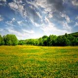 Nationaal park Sumava - Tsjechische Republiek Royalty-vrije Stock Fotografie