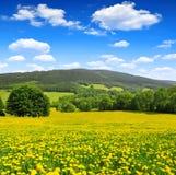 Nationaal park Sumava - Tsjechische Republiek Stock Afbeeldingen