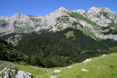 Nationaal Park Sutjeska Royalty-vrije Stock Foto