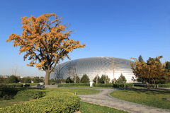 The national big theater of china Royalty Free Stock Photography