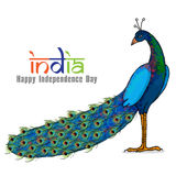National bird for Indian Independence Day. Royalty Free Stock Photos