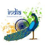 National bird Peacock for Indian Independence Day. Stock Photos