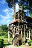 National Botanical Garden of Malaysia stock photos