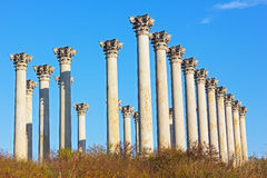 National Capitol Columns in the early morning. Stock Photos