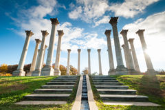 National Capitol Columns at the United States National Arboretum in Washington DC Royalty Free Stock Image